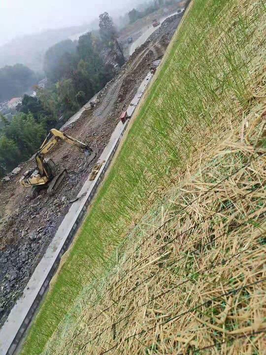 成都植被毯河堤护坡,生态毯绿化效果图好价格 中国供应商