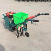 黄豆专用点播机 施肥点播机价格 富民机械
