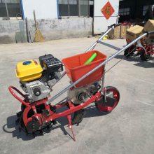 _汽油式施肥播种机 多功能玉米播种机 富民机械