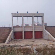 市政工程4米*2.5米铸铁闸门QL-2*120-SD手电两用螺杆式启闭机