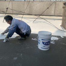 四川省销售蜀禹PET湿铺防水卷材 各类防水涂料