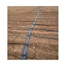 玉米滴灌系统 玉米滴灌系统安装 玉米滴灌系统设计