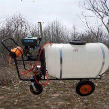 启航牌高压手推式喷药机 汽油自走式打药机 果园专用喷雾器