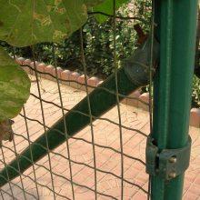 【工厂现货批发】圈玉米铁丝网 栏鸡鸭专用围栏网 绿色养殖网