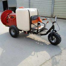 小型自走式打药机 水稻打药车 富兴 喷雾器厂家