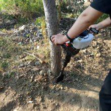 启航牌大直径小树苗挖树机 大马力起树移栽机 便携式大马力移苗机