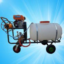 启航牌园林绿化喷雾器 手推式打药机 新款高效率喷雾器