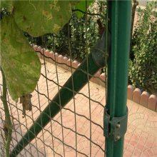 种植园围栏生产厂家 葡萄采摘园铁丝网围栏 绿色方孔卷网