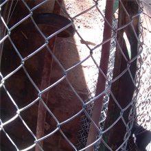 围墙网批发 铁丝围墙网 热镀锌勾花网厂家