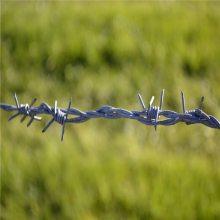 旺来刺绳围栏网 铁丝网刺绳 铁蒺藜网