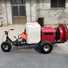 高射程打药车 高压喷雾器 富兴手推高压喷雾器