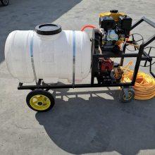 手推式汽油喷雾器 大棚喷雾器 富民机械