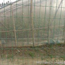 全国直销铁丝网 园林围墙围栏网 抗老化浸塑荷兰网