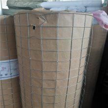 浸塑电焊网批发 抹墙电焊网 养殖铁丝网价格