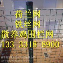 优质护栏网围栏规格 圈山圈地安全围护网 塑料皮围栏铁丝网厂家焊接浸塑涂塑网
