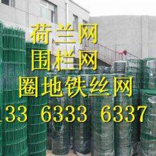 园林果园土养鸡围栏铁丝网 厦门浸塑荷兰网厂家直销 圈山钢丝网