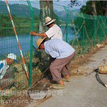 宿州养鸡护栏网 安平优盾金属网 锌钢围栏围墙网 焊接涂塑荷兰网