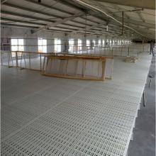 鸡鸭鹅用漏粪板 肉鸡肉鸭网床 塑料漏粪地板厂家