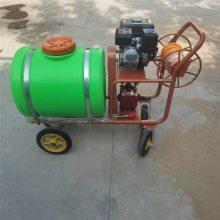 大容量的喷雾器 富兴 园林高压打药机 手推式农用喷雾器
