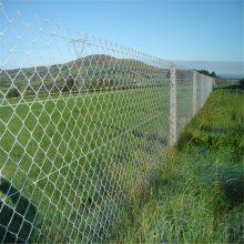 旺来体育场围网 青岛球场围网 镀锌丝勾花网