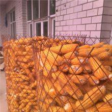 【大量现货】1.5*10m圈玉米网|粮仓钢板网|圈地菱形网