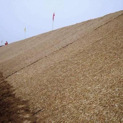 椰纤维植被毯厂家,高边坡绿化解决这石头人,植物纤维毯,麻椰固土毯