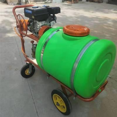 手推式高压打药机 富兴大容量喷雾器 背负式多功能打药机