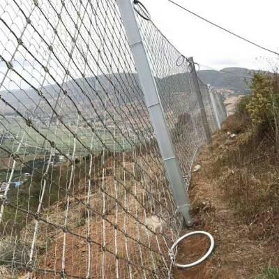 金坛被动边坡防护网供应商