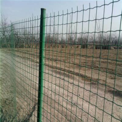 【实体 公司】山坡圈地围栏网 园林围墙铁丝网 直销荷兰网